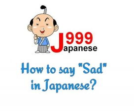 how to say your an idiot in japanese