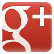 +1Google